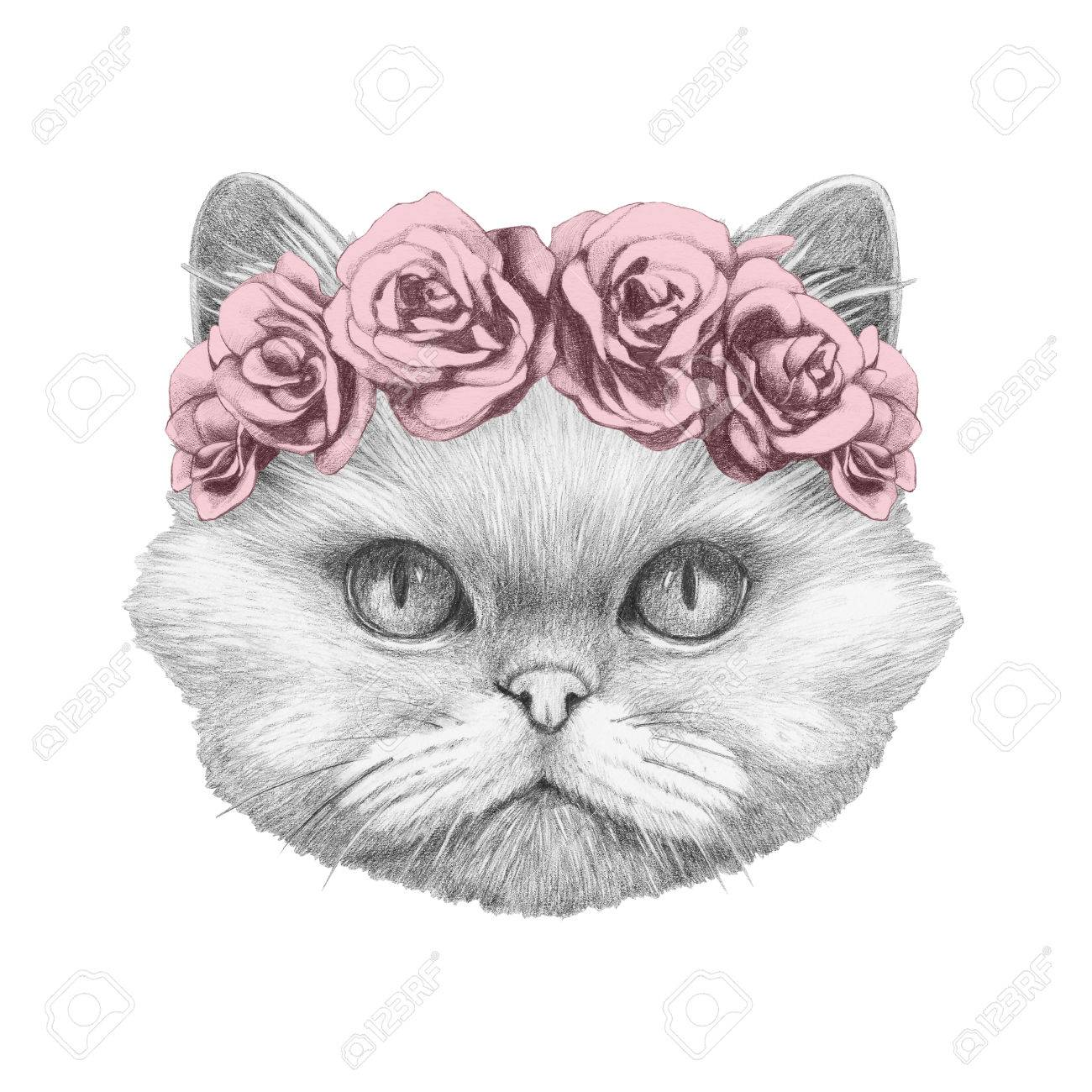 Portrait of persian cat with floral head wreath hand drawn illustration stock illustration