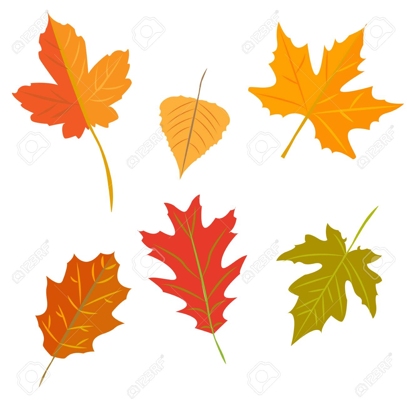 Autumn Leaves Set Isolated On White Background Simple Cartoon Royalty Free Cliparts Vectors And Stock Illustration Image 95802332