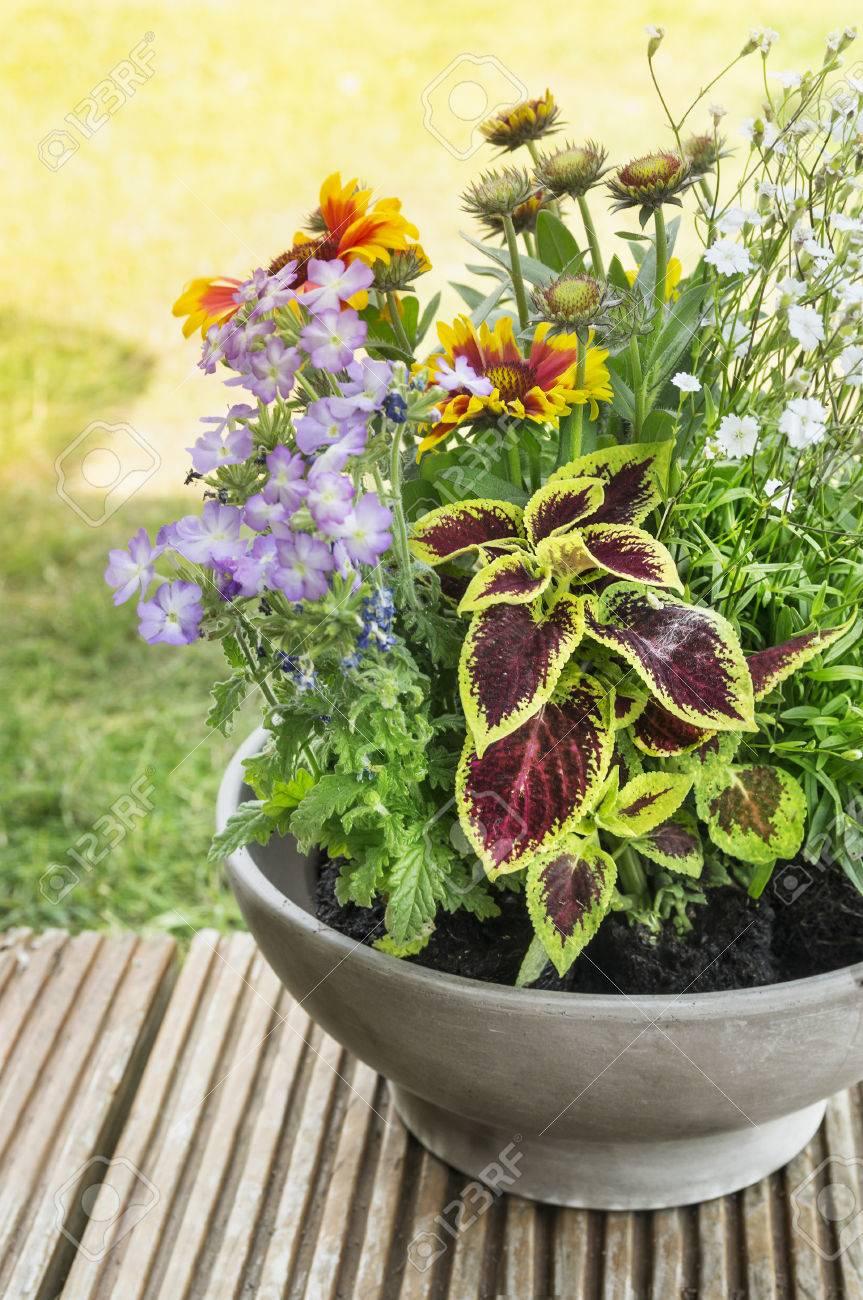 Terraza Con Jardin De Flores