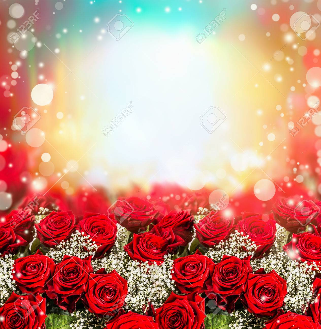 Red Roses Background With Sun Light And Bokeh Garden Floral Border Stock Photo