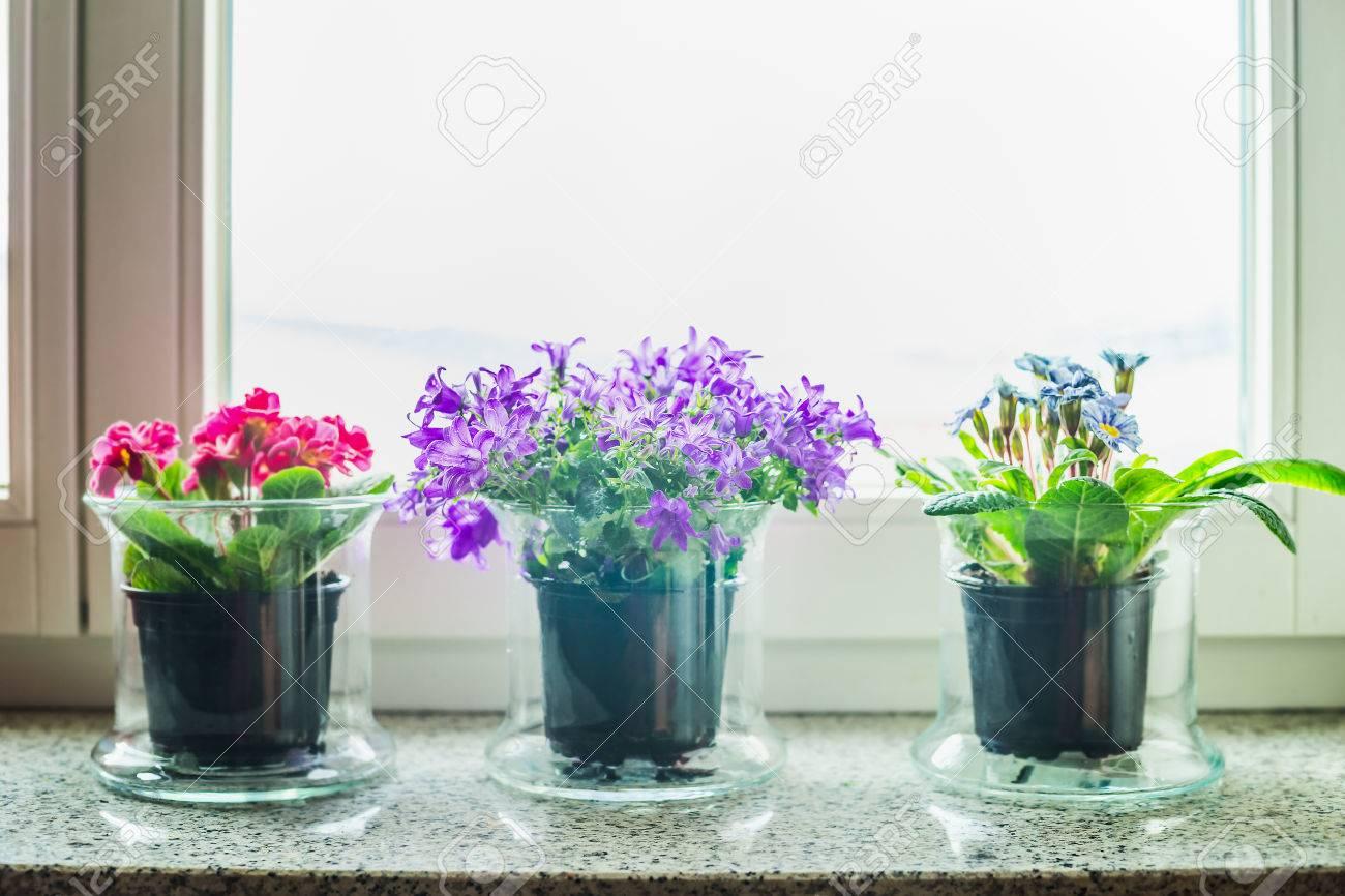 Schone Dekoration Mit Gras Blumen Topfe Auf Der Fensterbank