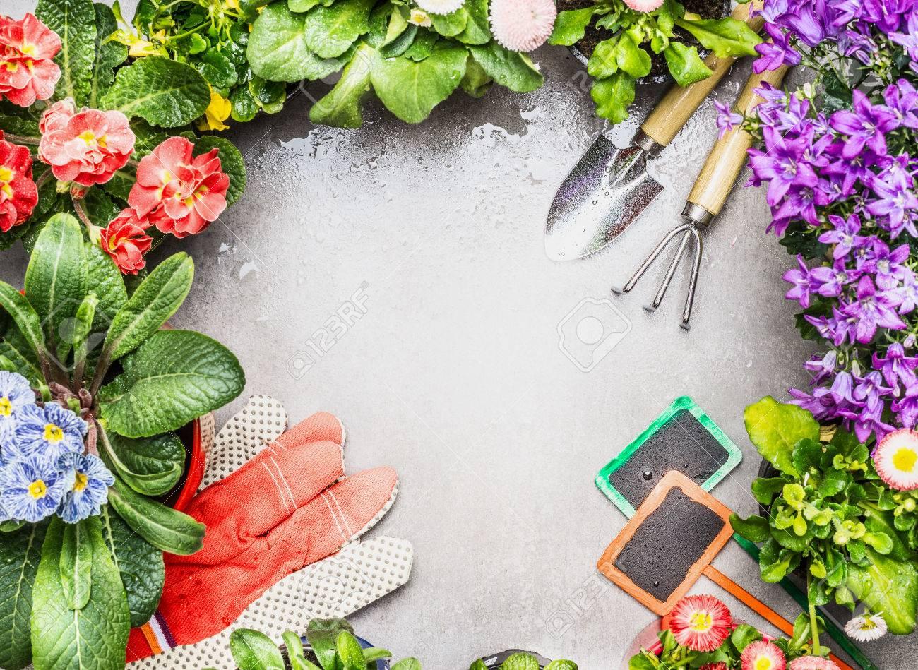 Marco De La Jardinería Con Herramientas De Jardín, Las Flores ...