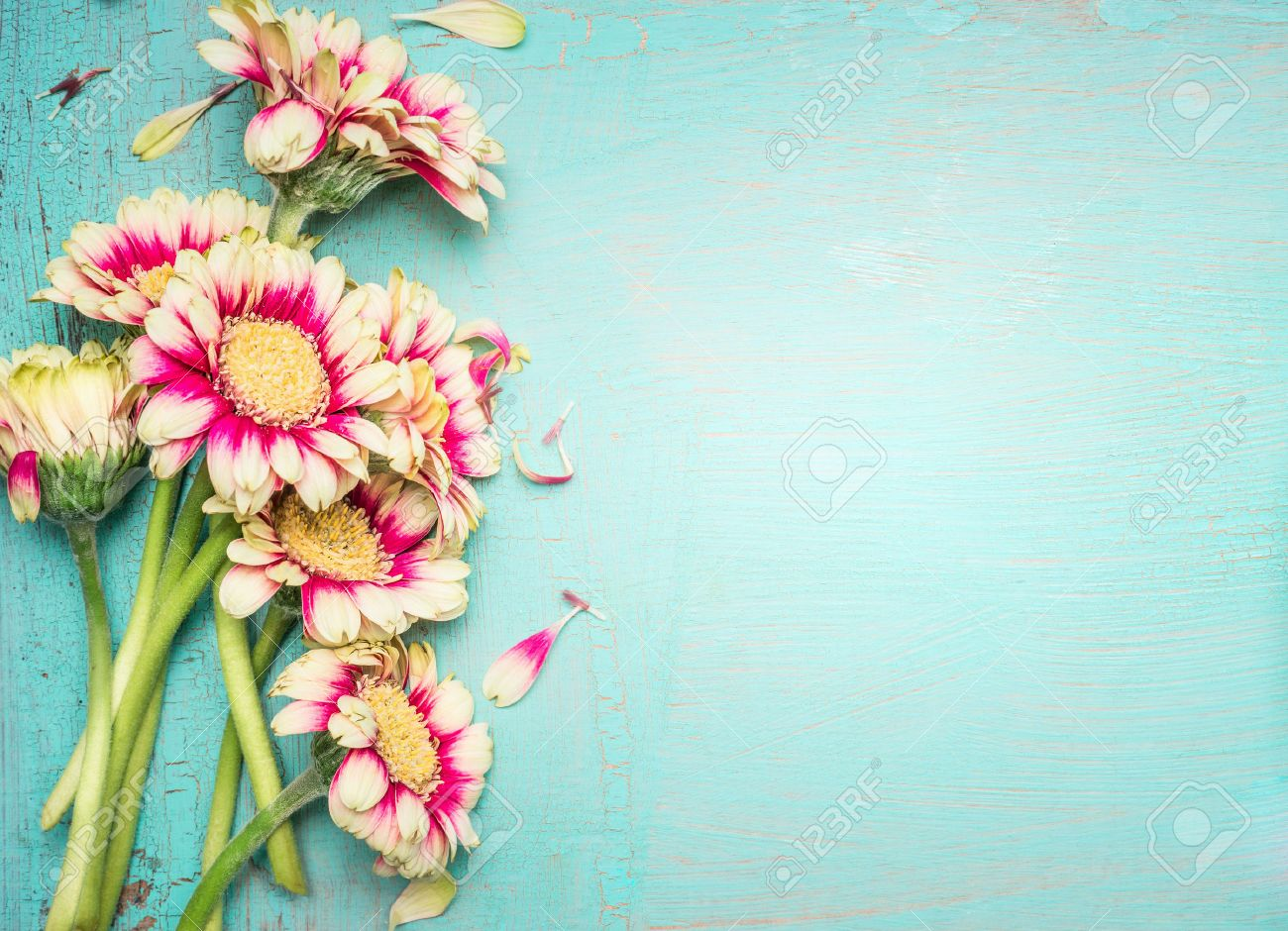 Lovely Flowers On Turquoise Shabby Chic Background Festive Greeting Card Stock Photo