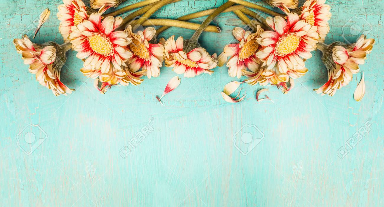 Pretty Flowers On Turquoise Shabby Chic Background Top View