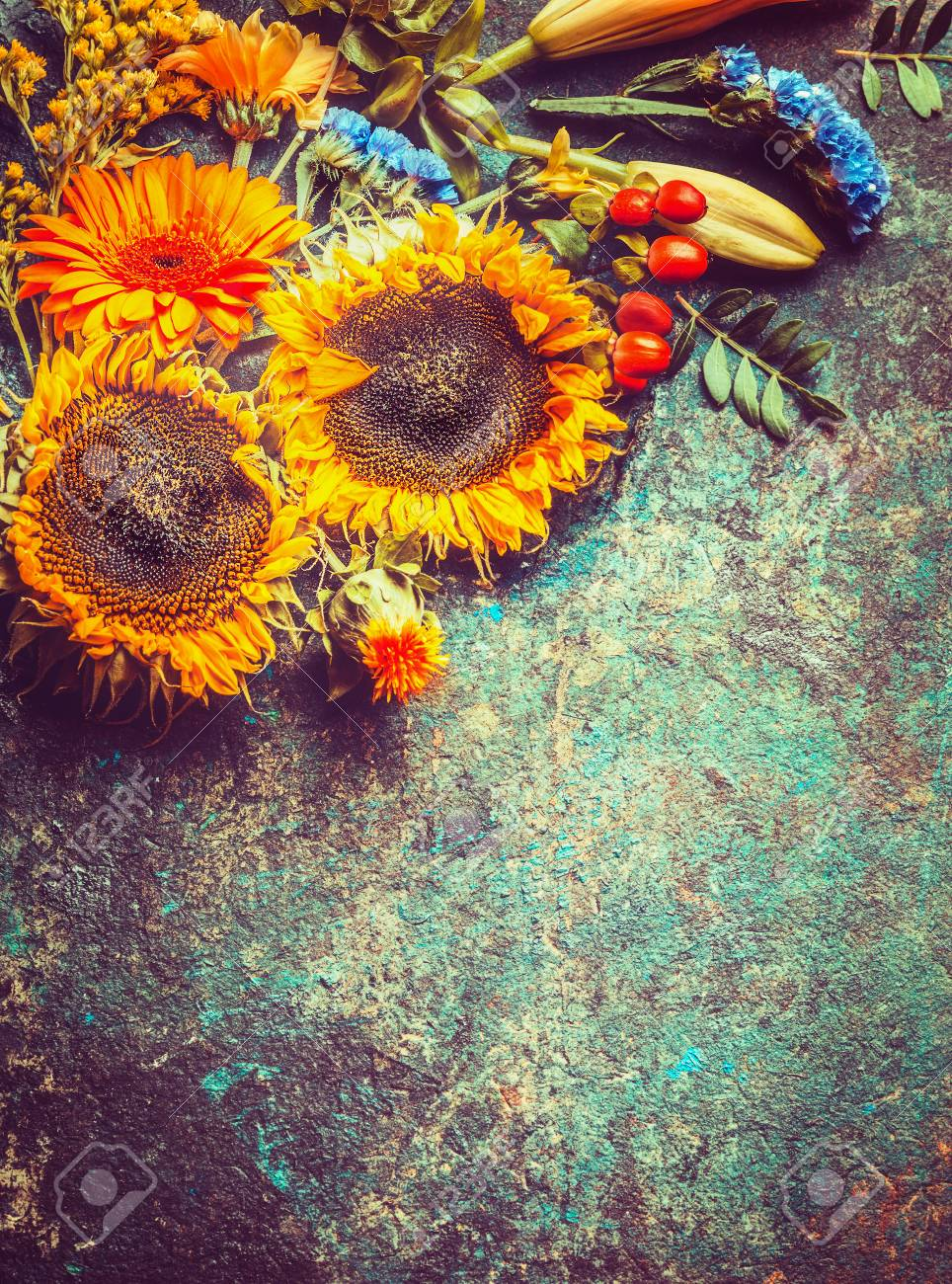 Autumn Floral Composing With Sunflowers On Vintage Rustic Background Top View Stock Photo