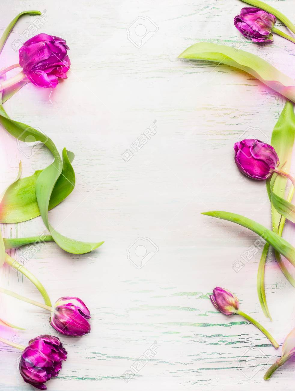 Tulips Frame On Light Shabby Chic Background Top View Vertical