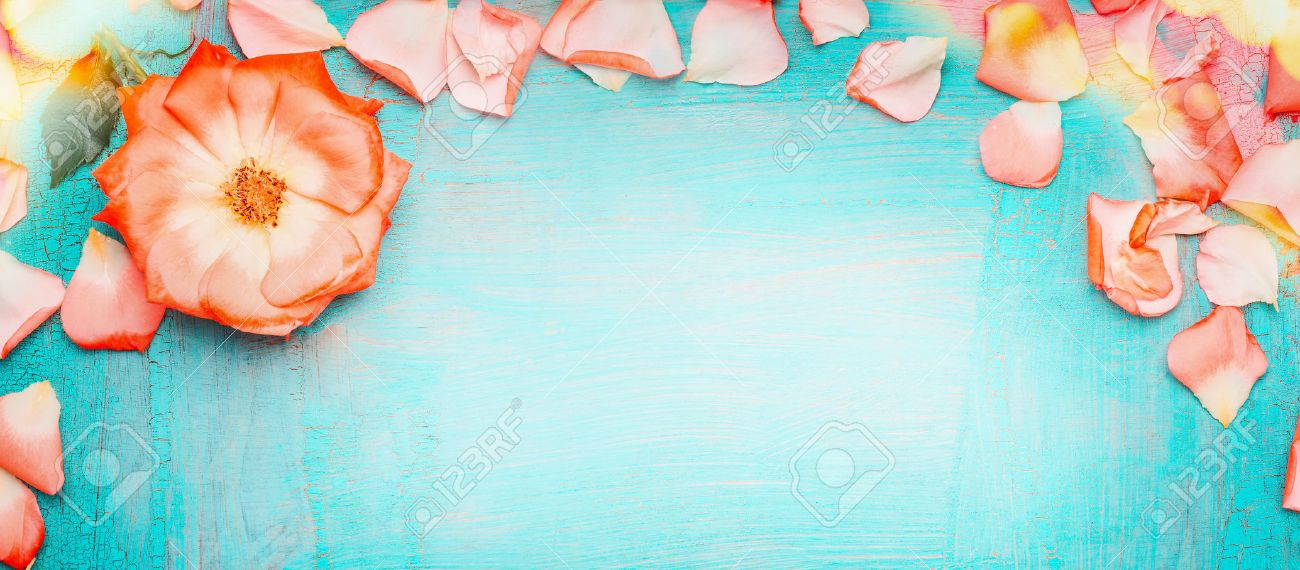 Pink Pale Rose Petals Border With Bokeh On Blue Turquoise Background