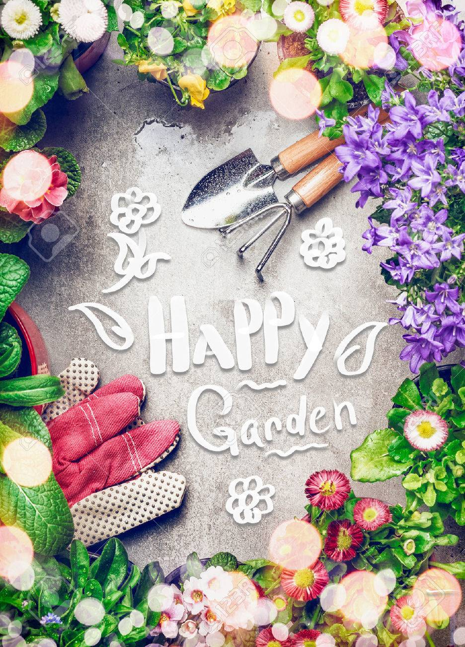 Fond de jardinage avec assortiment de fleurs de jardin colorées dans des  pots, des outils et du texte manuscrit jardin heureux, vue de dessus