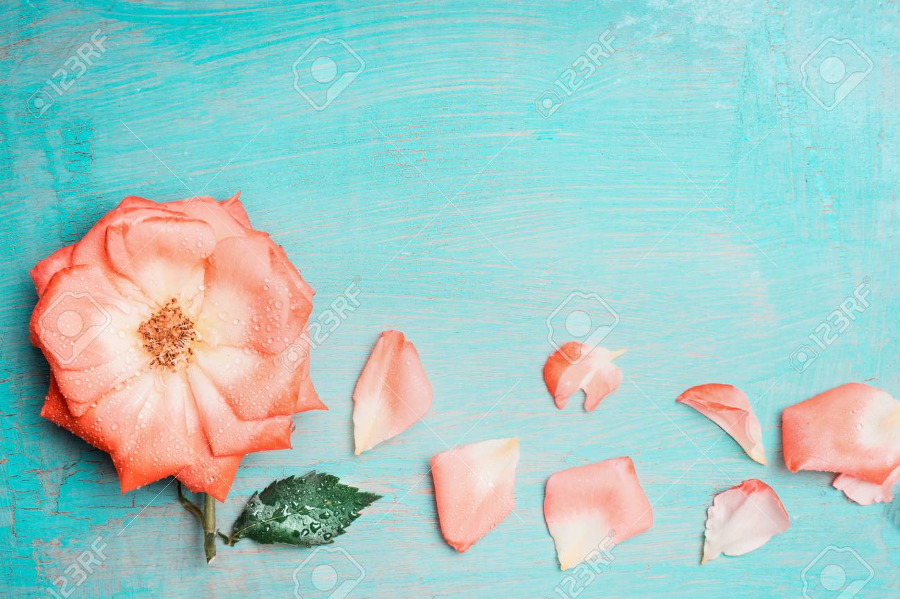 Pretty Flowers On Turquoise Blue Shabby Chic Background Greeting