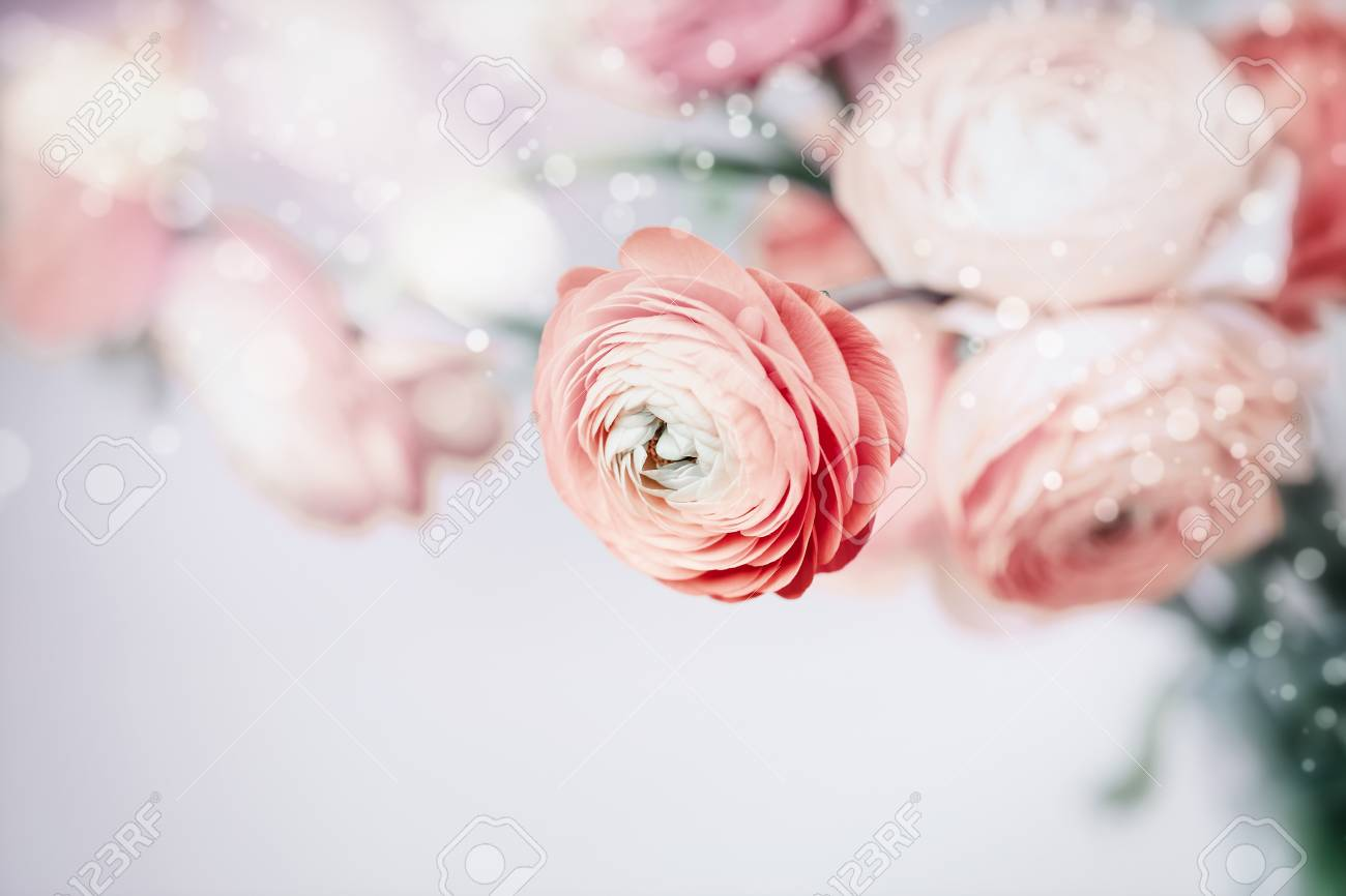 Pastel Floral Background With Pretty Flowers Stock Photo Picture