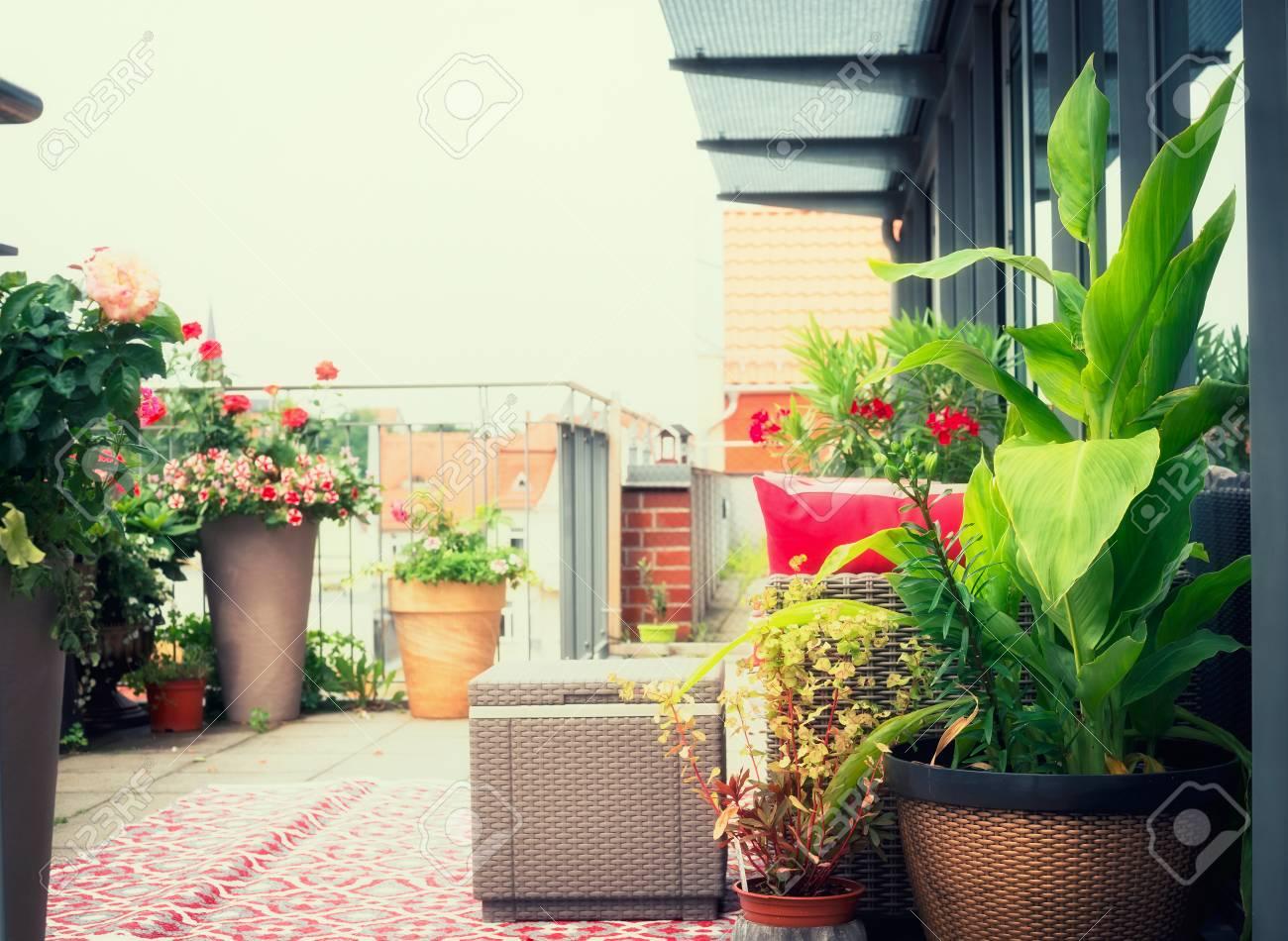 Canna Patio Flores Macetas En El Balcón O Terraza Con Muebles De Ratán Vida Urbana Y Estilo De Vida