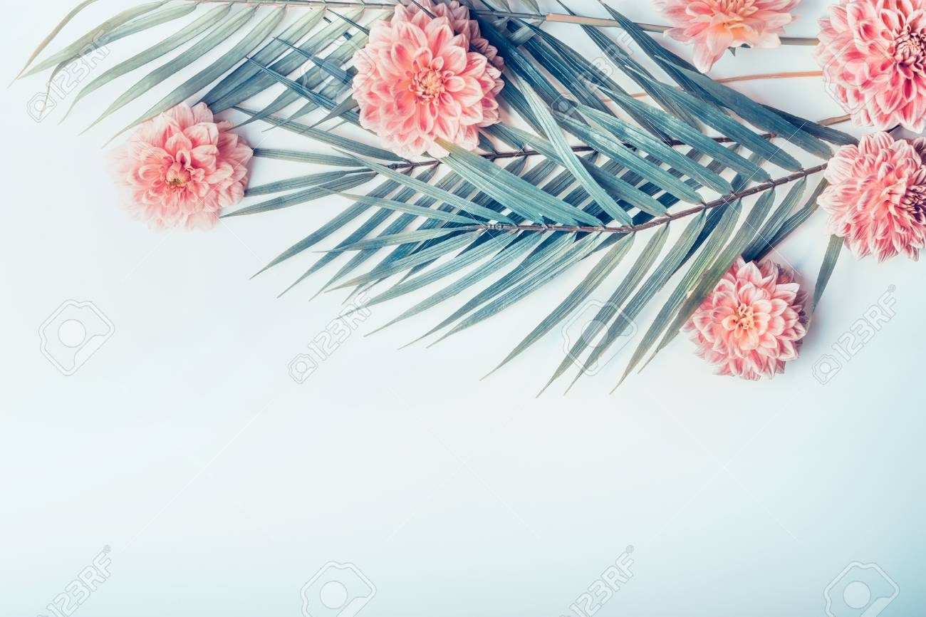 Creative Layout With Tropical Palm Leaves And Pastel Pink Flowers Stock Photo Picture And Royalty Free Image Image 90028266