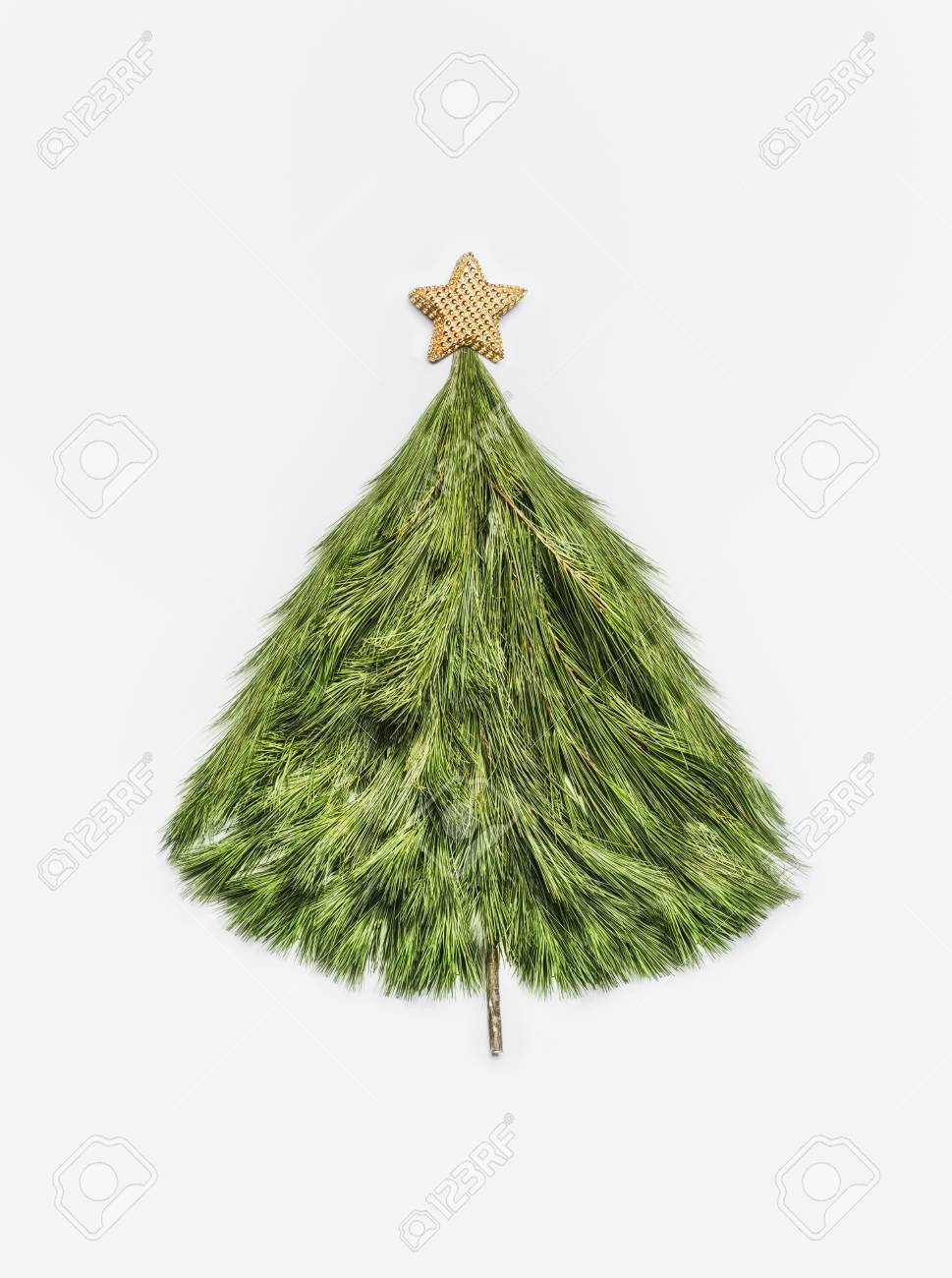 christmas tree made with cedar branches with gold stars on white background top view