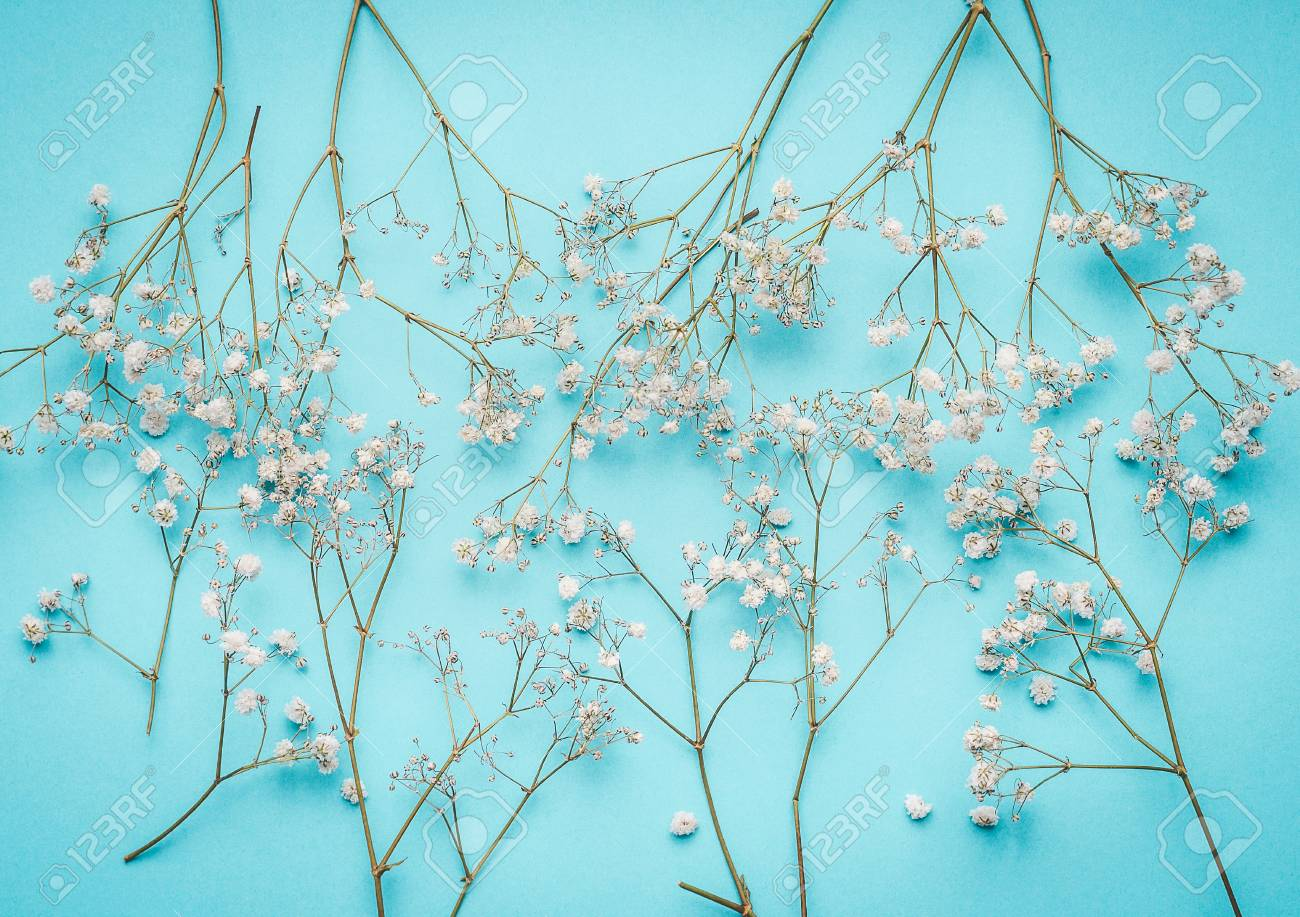 Floral Layout With Little White Flowers At Turquoise Blue Background