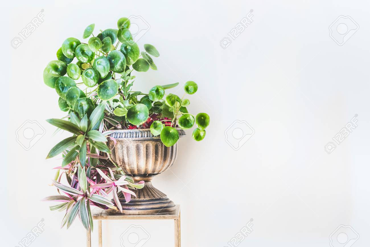 Beautiful Green Home Interior And Decor Ideas. Urn Planter With ...