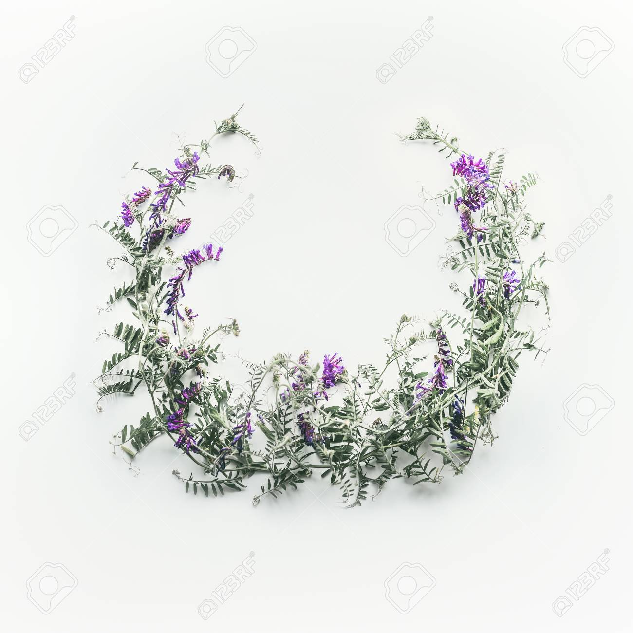 Wreath Made Of Wild Purple Flowers With Leaves On White Background