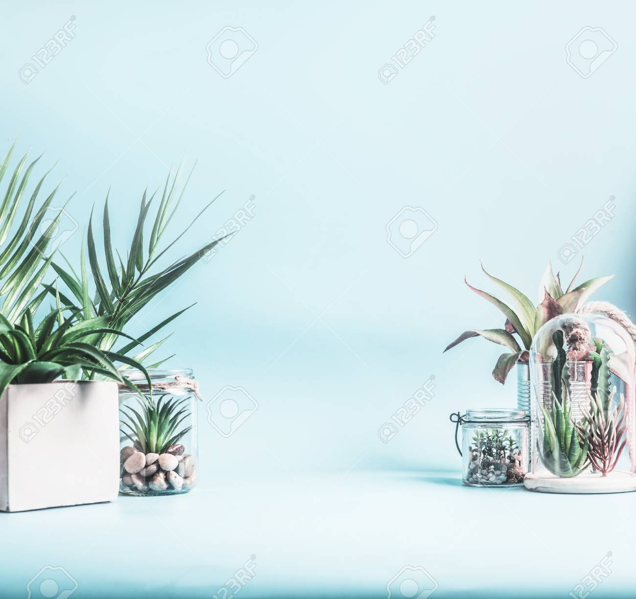 Trending Home Plant Decor Green House Plants In Pots Glass Stock Photo Picture And Royalty Free Image Image 118193437