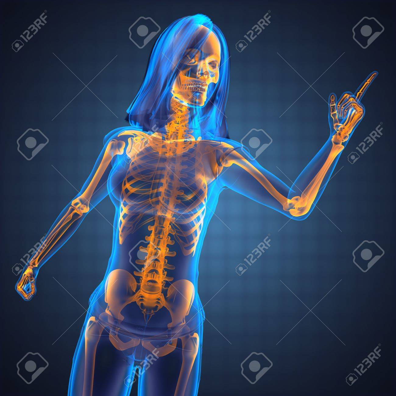 cute woman radiography made in 3D graphics Stock Photo - 12602170