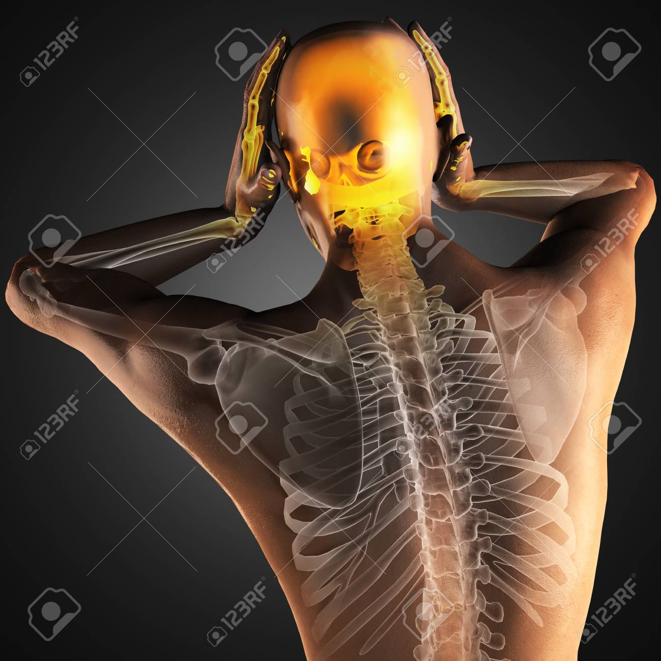 human radiography scan made in 3D Stock Photo - 15802997