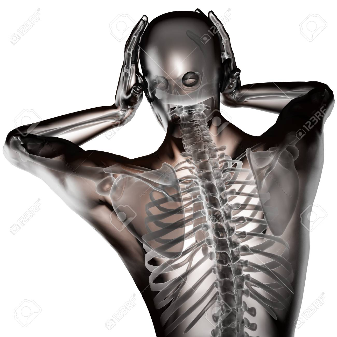 human radiography scan made in 3D Stock Photo - 15894026