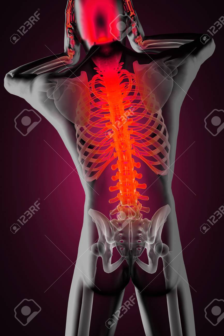 human radiography scan made in 3D Stock Photo - 15967271