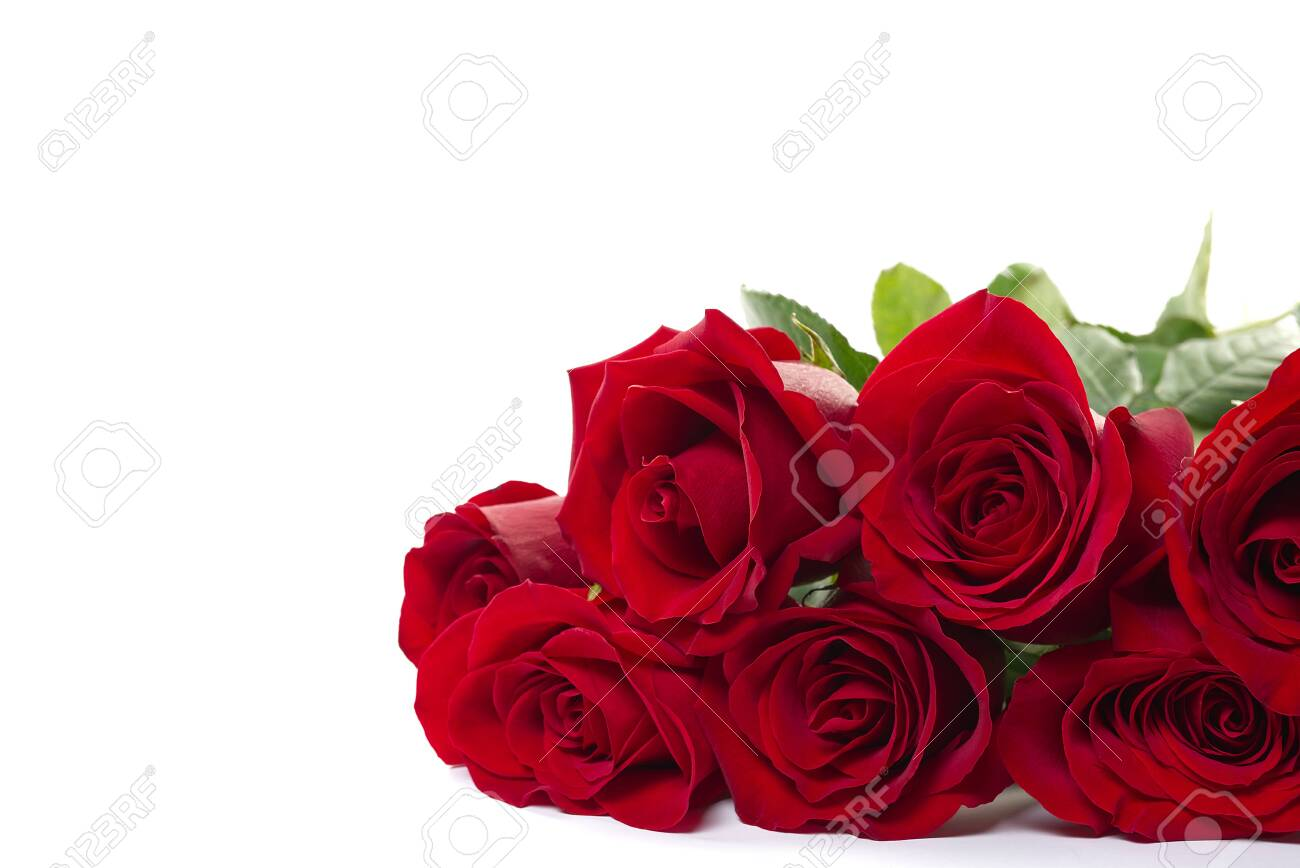 beautiful bouquet of red roses lies on a white background. Young red roses are very fragrant. Dutch flowers are popular all over the world and delight millions of women around the world. - 140392375