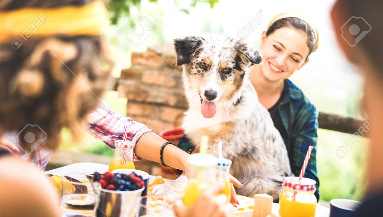 Happy friends having healthy pic nic breakfast at countryside farm house - Young people millennials with cute dog having fun together outdoors at garden party - Food and beverage lifestyle concept - 117531293