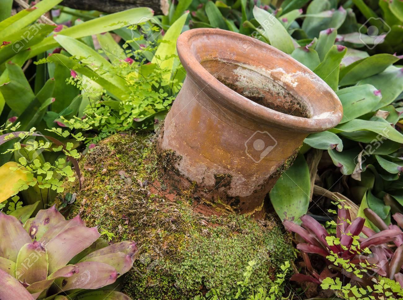 Mini Garden Decoration By Pottery Jar, Pottery Pitcher Stock Photo ...