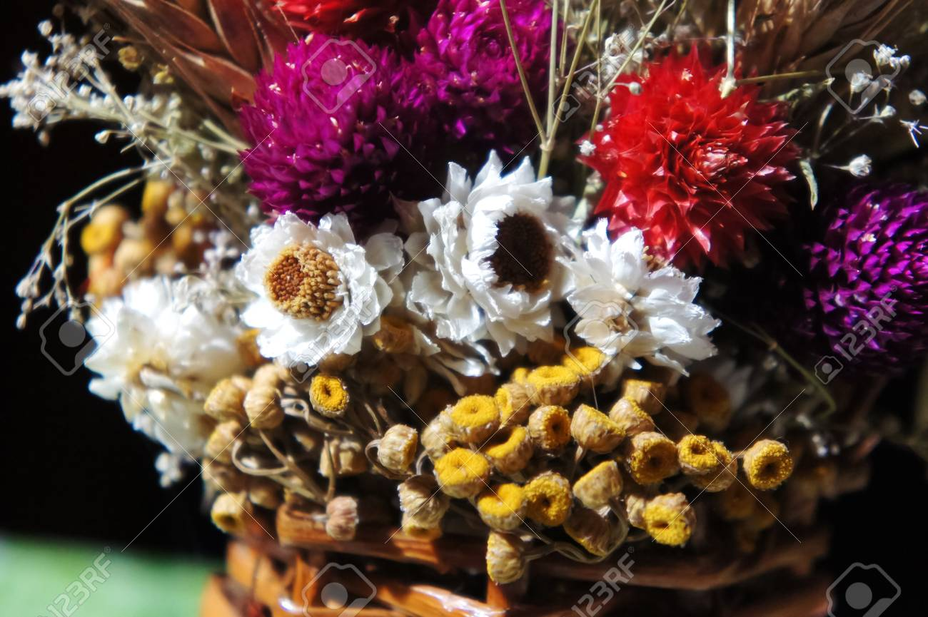 Bouquet Of Dried Flowers Dry Flowers Spring Flower Bouquet Stock Photo Picture And Royalty Free Image Image 120808729