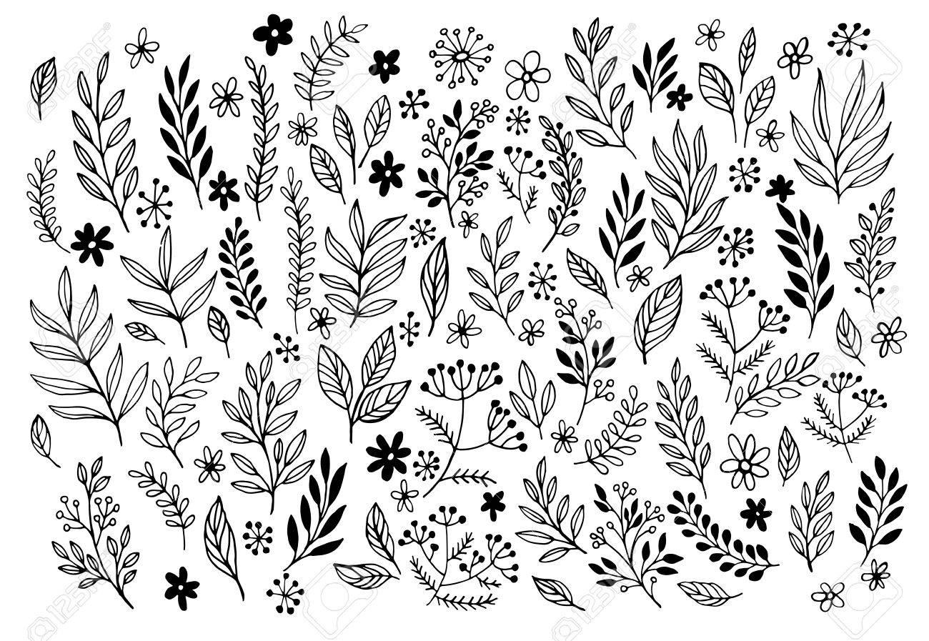 Set of sketches and line doodles hand drawn design floral elements. Vector illustration EPS10 - 50526696