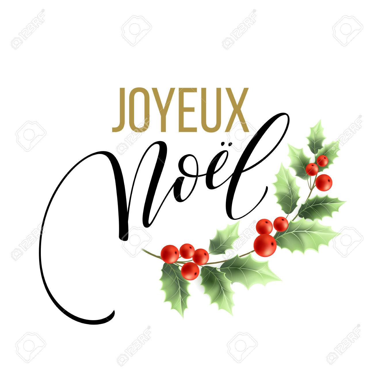Merry christmas card template with greetings in french language merry christmas card template with greetings in french language joyeux noel vector illustration eps10 m4hsunfo