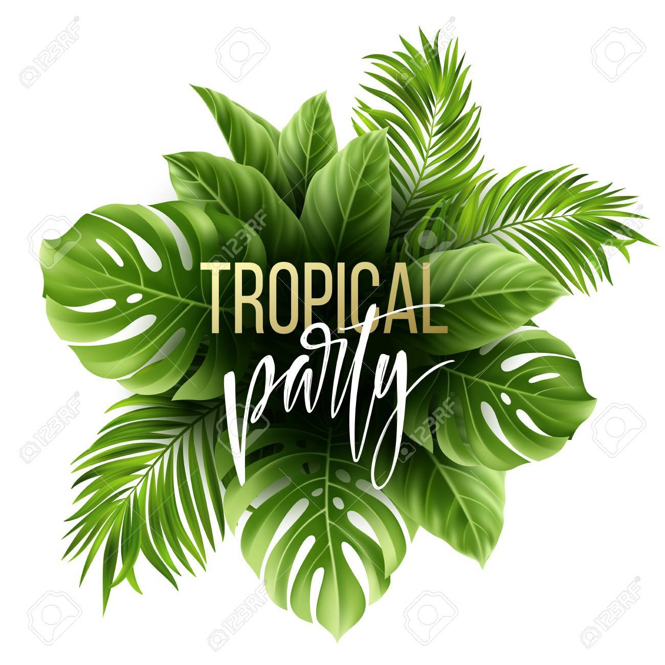 Summer tropical leaf pattern with exotic palm leaves. Party flyer template. Handwriting lettering. Vector illustration - 76689540