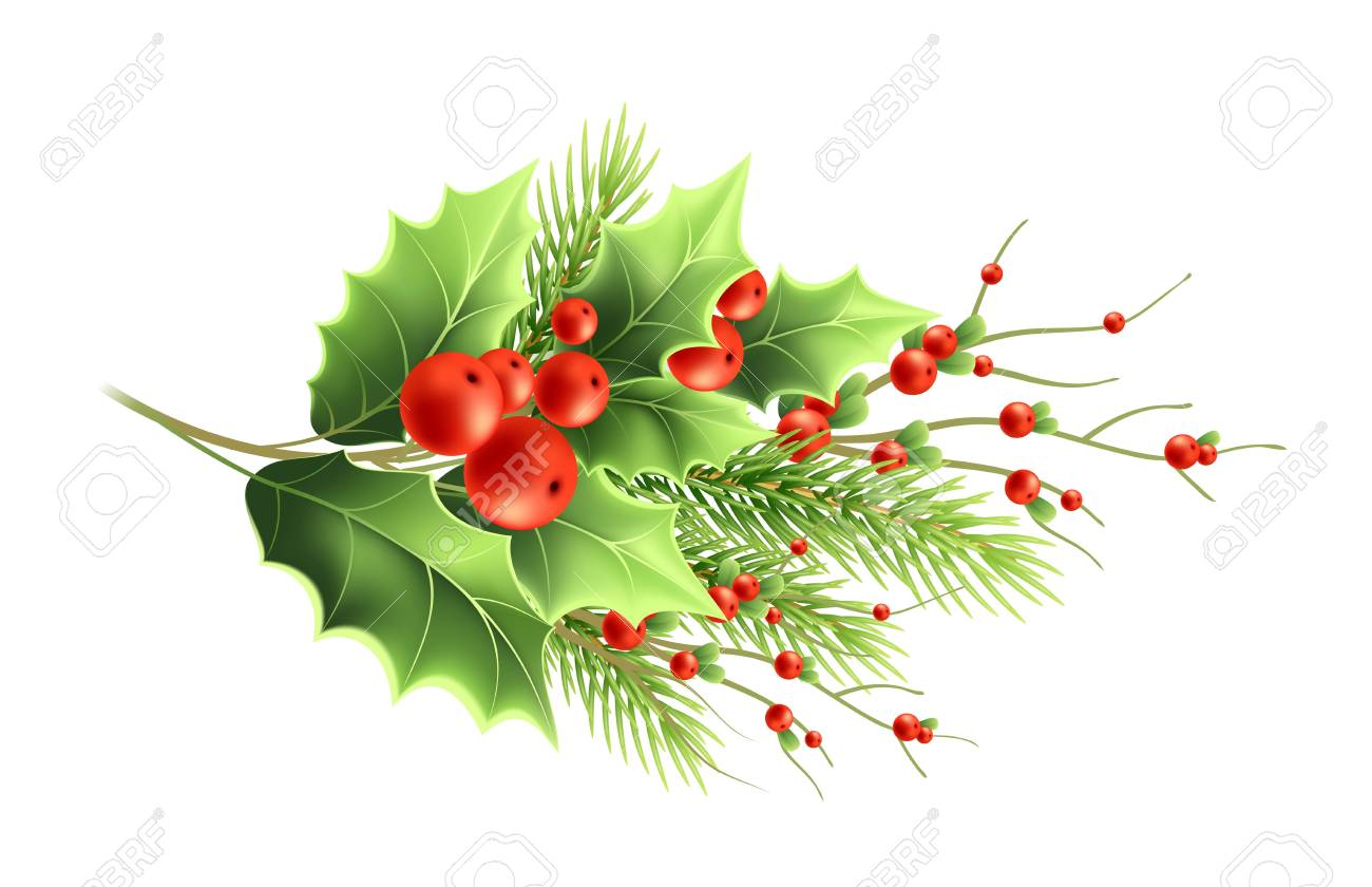 Christmas Plants Branches Realistic Vector Illustration Mistletoe