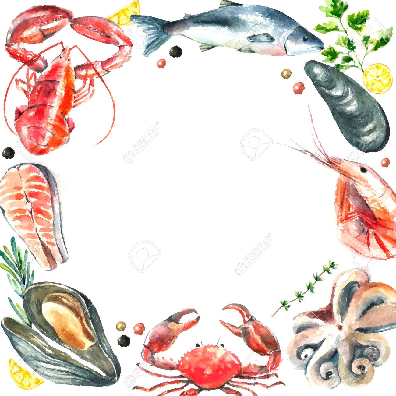 Aquarell Rahmen Seafood.Hand Ziehen Isolierte Darstellung Auf Weißem ...