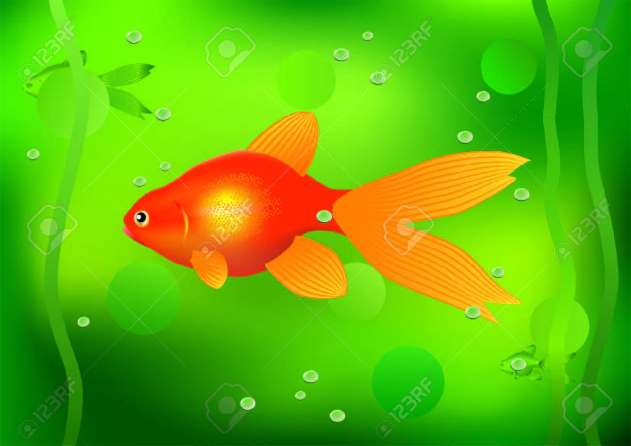 Goldfish. Stock Vector - 7133534