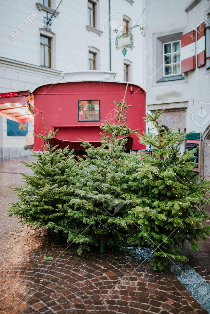 Alberi Di Natale Decorati Foto.Alberi Di Natale Decorati Sulla Strada