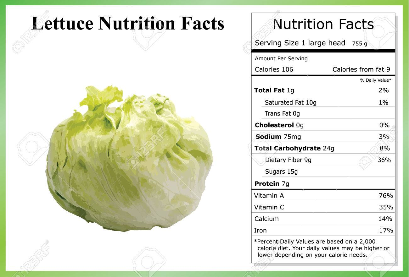Lettuce Nutrition Facts - 40692184