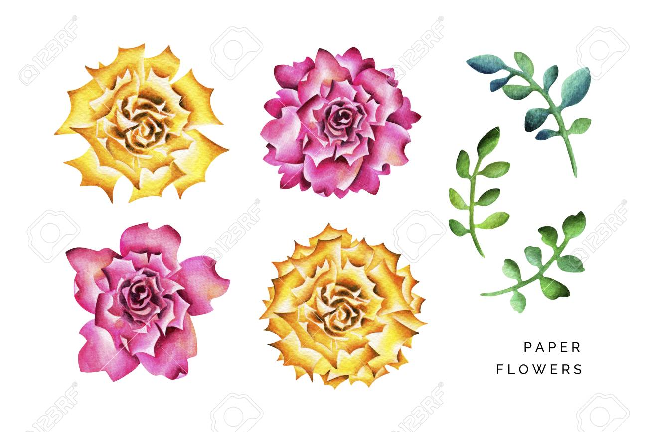 Big paper flowers with branches watercolor illustration isolated big paper flowers with branches watercolor illustration isolated on white stock illustration 97844148 mightylinksfo