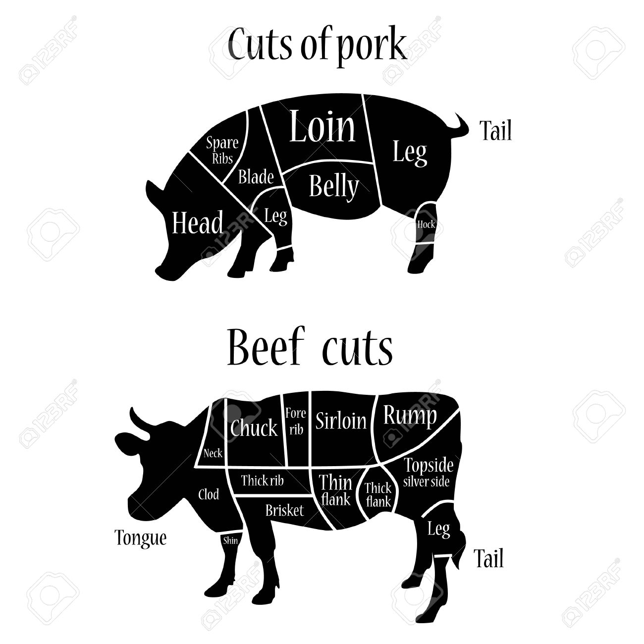 Vector illustration of graphic element on the menu for meat steak vector illustration of graphic element on the menu for meat steak cow pig divided into pieces pooptronica