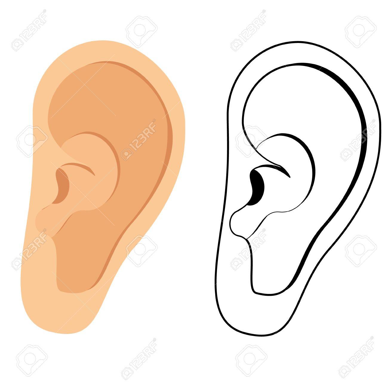 Vector illustration of human ear. Ear icon, symbol. Deaf, ear hearing - 45908375
