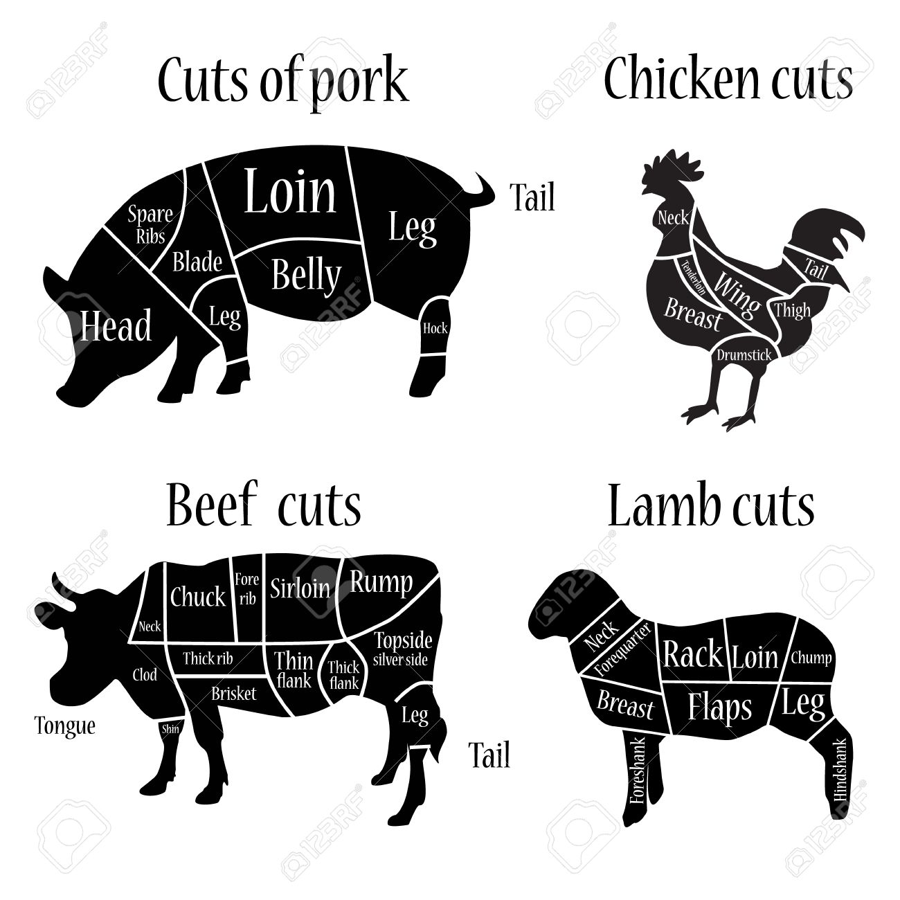Cow Butcher Diagram Of A S Wiring Libraries Pig Vector Illustration Lamb Chicken And Pork Cuts Diagrammvector