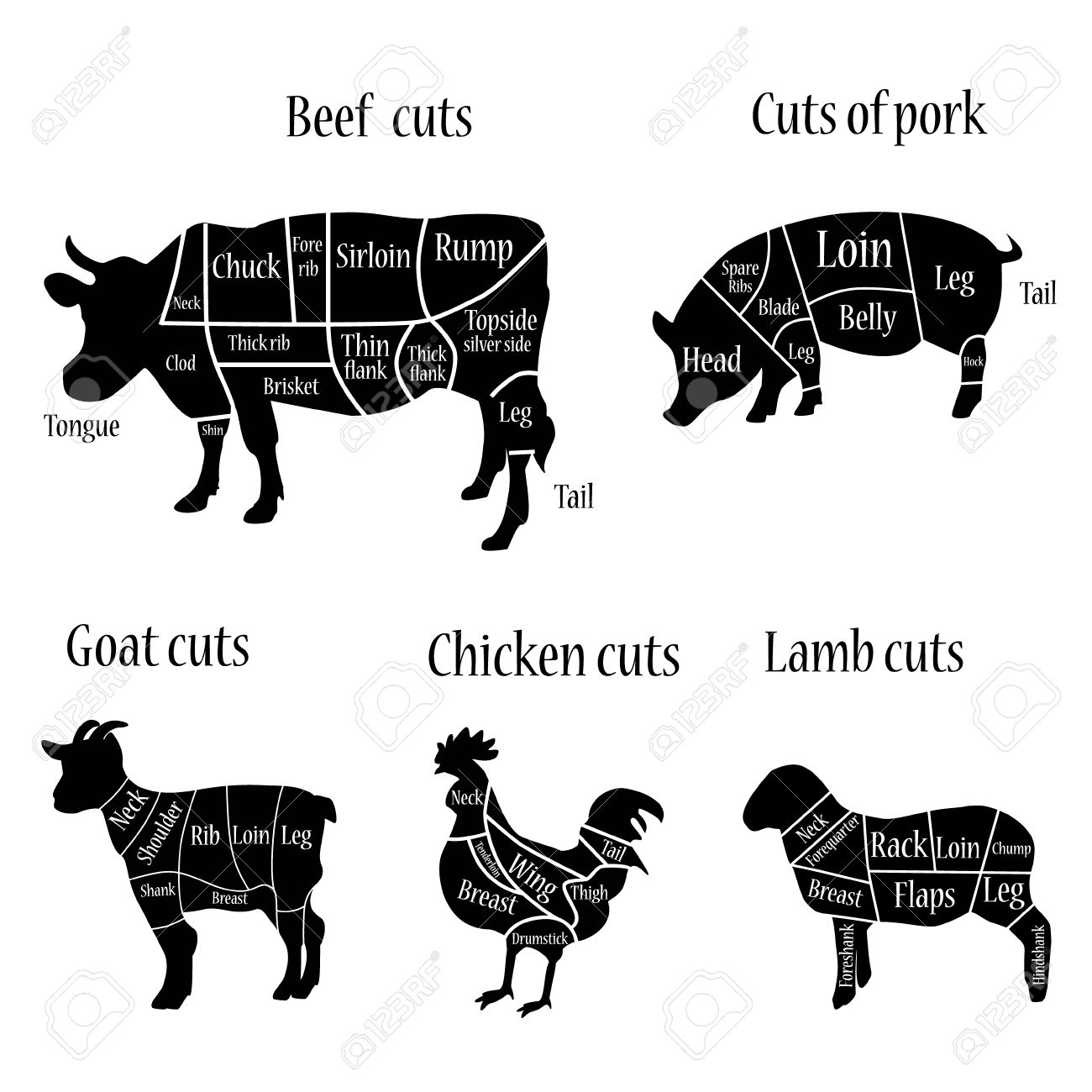 Vector Illustration Lamb, Goat, Chicken, Cow And Pork Cuts ... for Chicken Meat Cuts Chart  181pct
