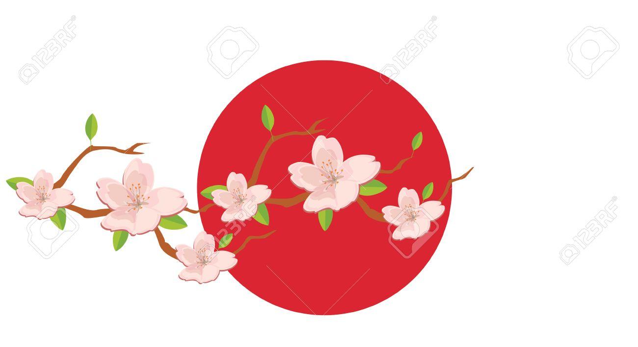 vector illustration blossom branch of pink sakura flowers on