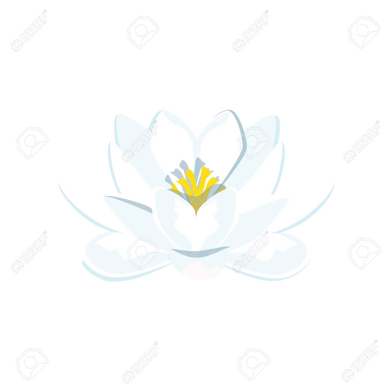 ベクトル イラスト美しい青い睡蓮や蓮の花は白い背景の上分離の