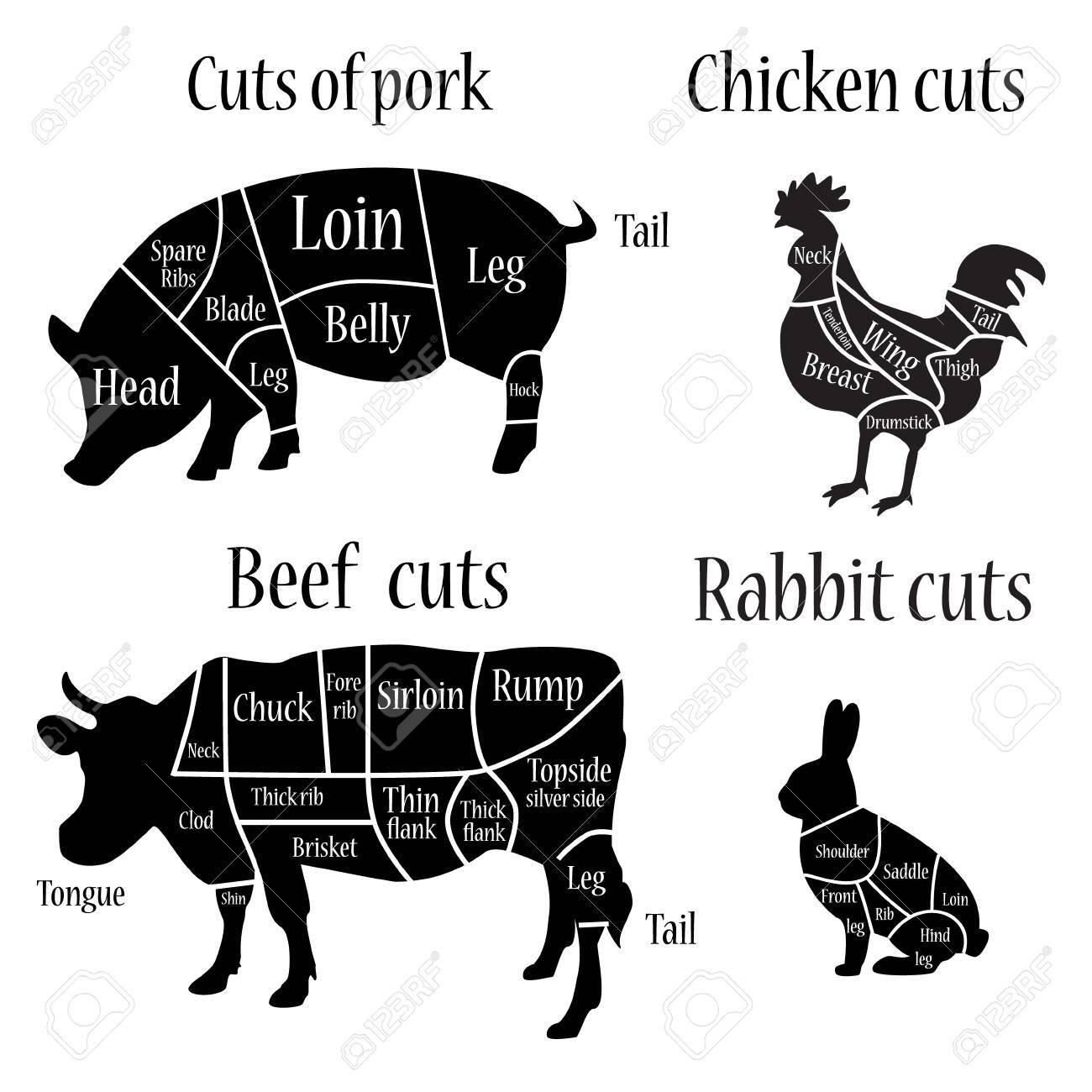 60655288 raster illustration chicken rabbit cow and pork cuts diagram or chart chicken pork cow black silhoue raster illustration chicken, rabbit, cow and pork cuts diagram