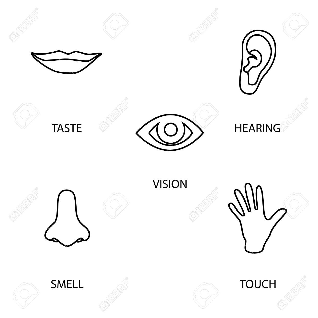 icon set of five human senses: vision (eye), smell (nose)