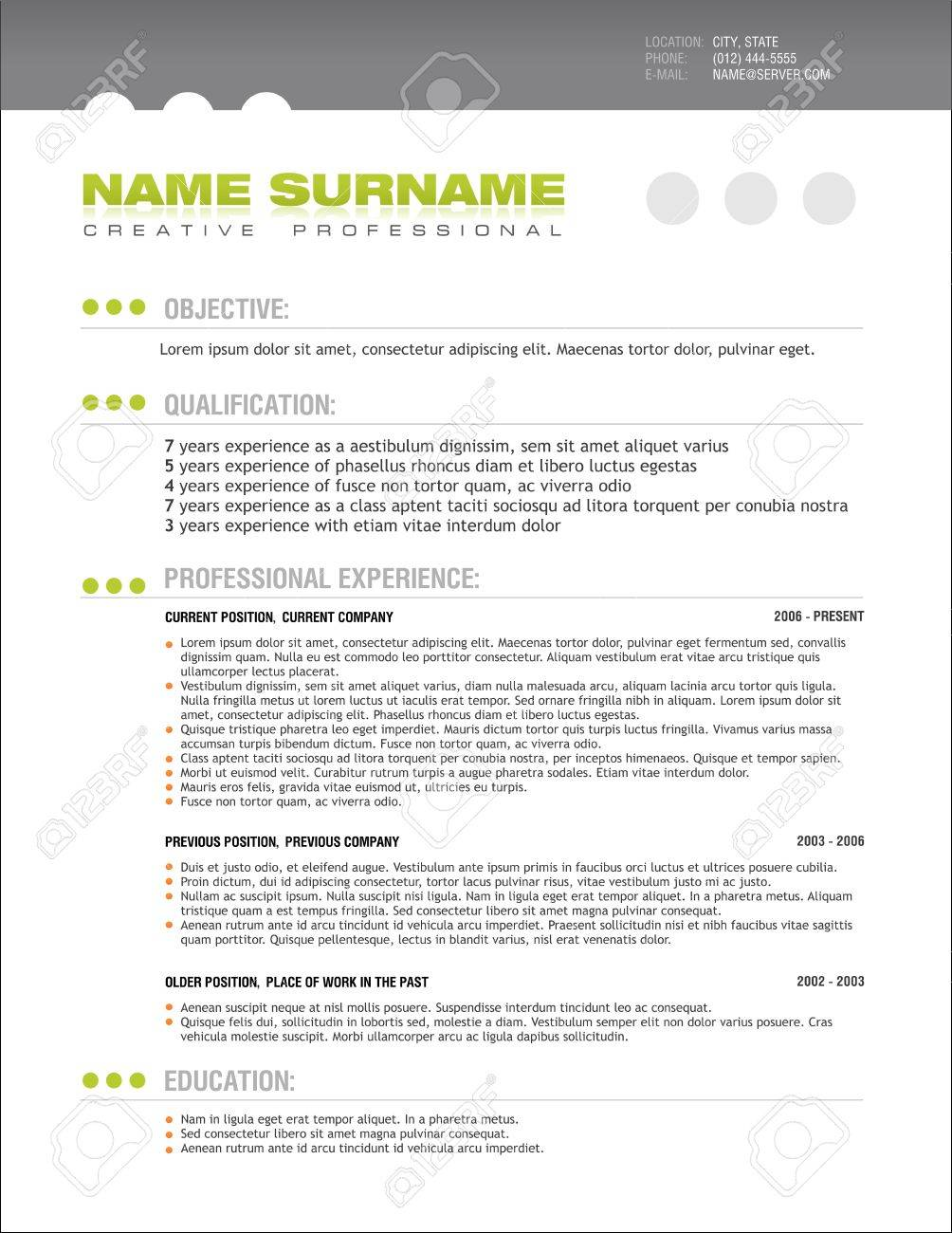 A template of professionally designed resume Stock Vector - 10436891