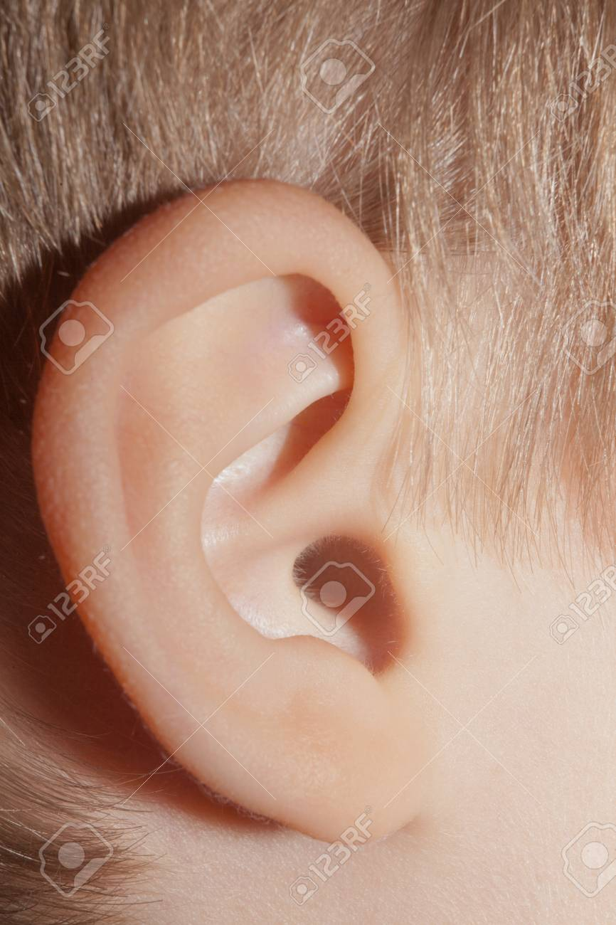 Human Ear, Body Parts, Anatomy Close-up Macro Stock Photo, Picture ...