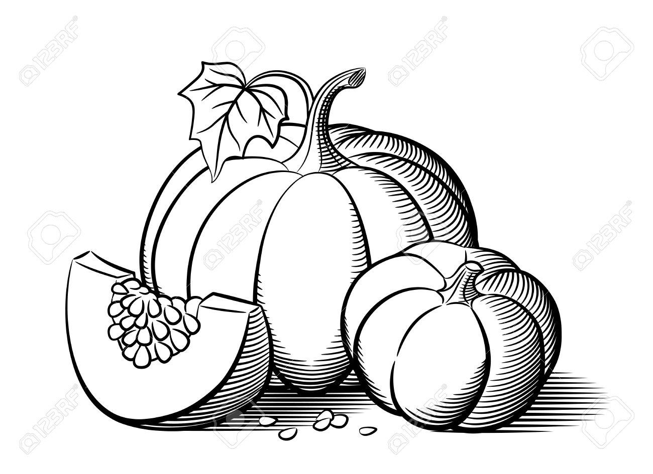 Stylized Image Of Pumpkins. Big Pumpkin, Small Pumpkin And Pumkin ...