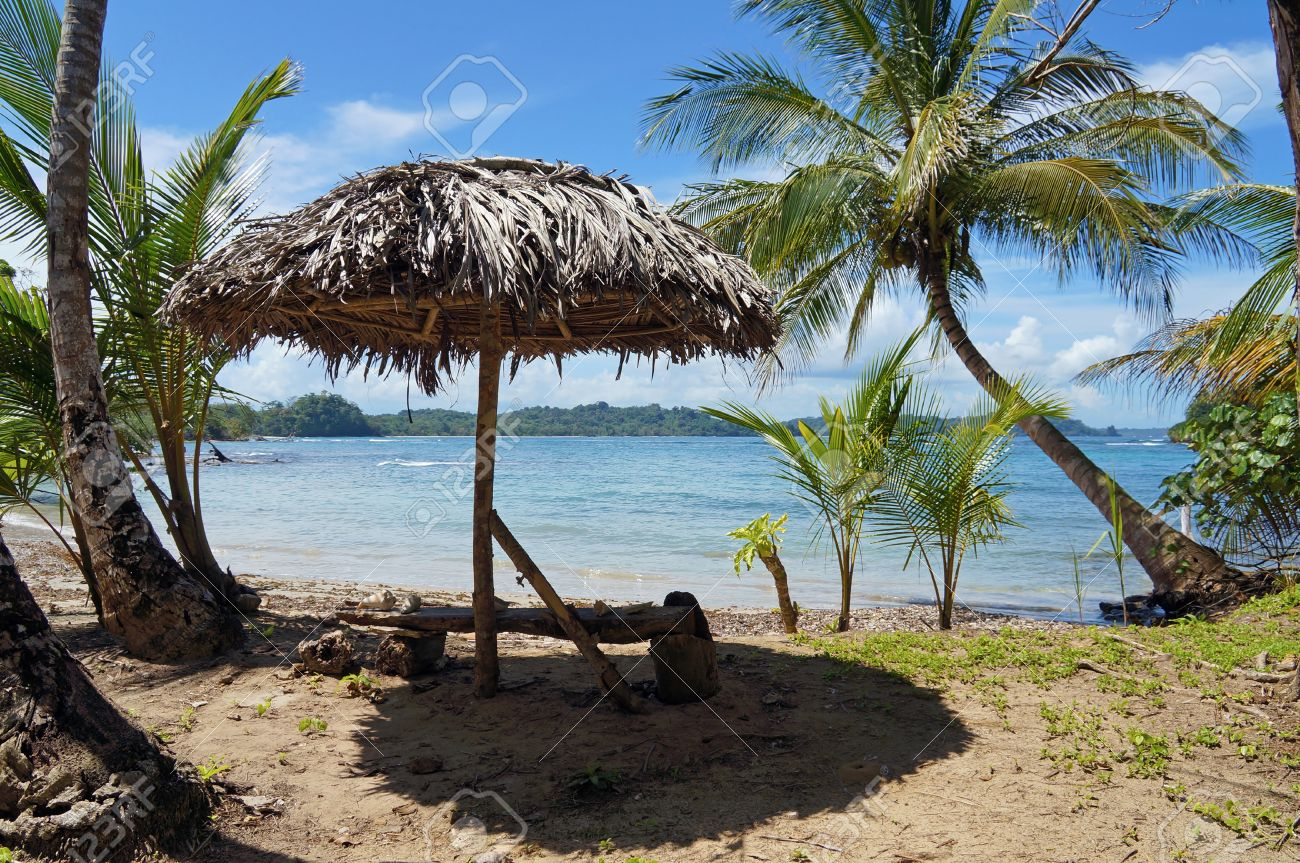 Palm leaf thatch umbrella under coconut trees on a tropical beach with Caribbean sea in background Stock Photo - 18457233